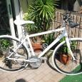 先日ご紹介しました、A氏のGIANT ESCAPE R3。 マスターのせがれ(筆者)の幼馴染でもあり、よくご来店頂いております。 まだお買い上げいただいてから、1ヶ月ほどですが、自転車はかなりアレンジが進み、ノーマル時に […]