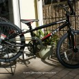 BMXの本場アメリカのメーカーGTから、Jr.BMXのご紹介です。 GT MACH ONE EXPERT(マッハワン エキスパート) メーカー希望価格¥25,200-(税込)  最近のお子様たちに人気のJr […]