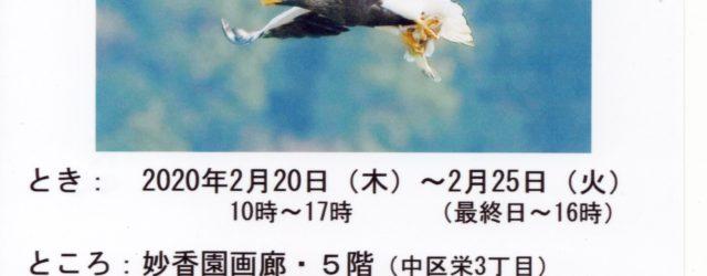 大至急お知らせ致します。 いつもこのブログにて野鳥ギャラリーの写真をご提供くださっている板津先生の個展が、ただいま名古屋で開催されております。 2020年2月20日(木)~2月25日(火)妙公園画廊5階にて 〒460-0 […]